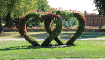 Chelmno flower hearts in the park